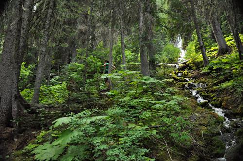 Heiko's Mountain Lakes Trail - Bisaro Cave and Waterfall