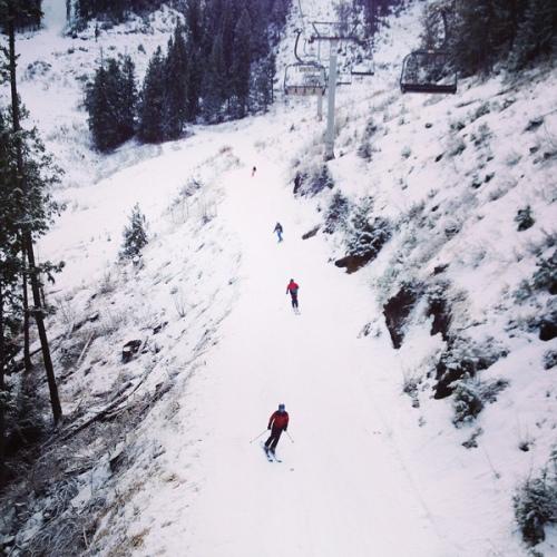 fernie alpine resort - community day - skiers from the lift