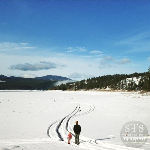 lake koocanusa - dorr road - tire tracks in the snow